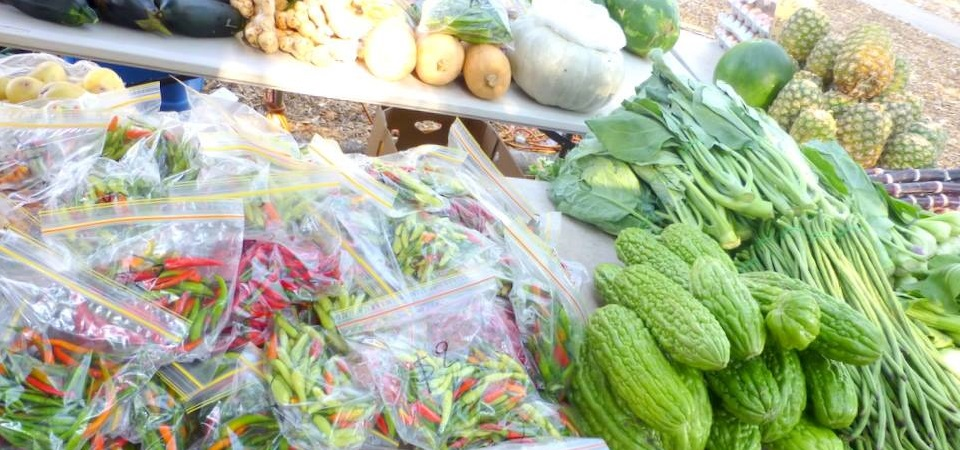 Territory Farmers Produce Fresh at the Marketplace